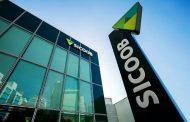 Sicoob é destaque na concessão de crédito a pequenos negócios