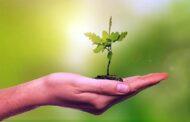 Fiemg lança programa de Fiscalização Ambiental Preventiva na Indústria
