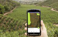 Cenibra utiliza tecnologia para monitorar florestas