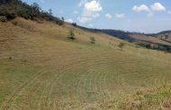 Cenibra adota técnica de conservação do solo no combate a escassez hídrica