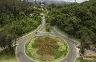 Ipatinga recebeu o plantio de 871 novas árvores em três meses
